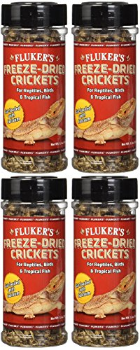 - (4 Pack) Fluker's 1.2-Ounce Freeze Dried Crickets