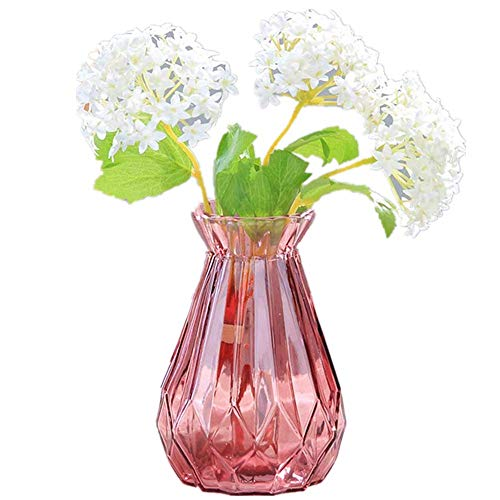 - Wansan Glass Vase Clear Transparent Flower Pots Simple Plant Container Hydroponics Small Bud Vase for Home and Wedding Indoor Decoration - Pink