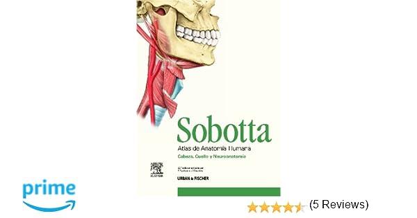SOBOTTA. Atlas de Anatomía Humana 3 VOL. + Tablas: Amazon.es ...