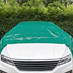 Laneetal-Telone-Occhiellato-Impermeabile-per-Esterno-in-PVC-500gm-Bordo-Rinforzato-Telo-di-Copertura-per-Mobili-Giardino-3x4m-Verde-0930149