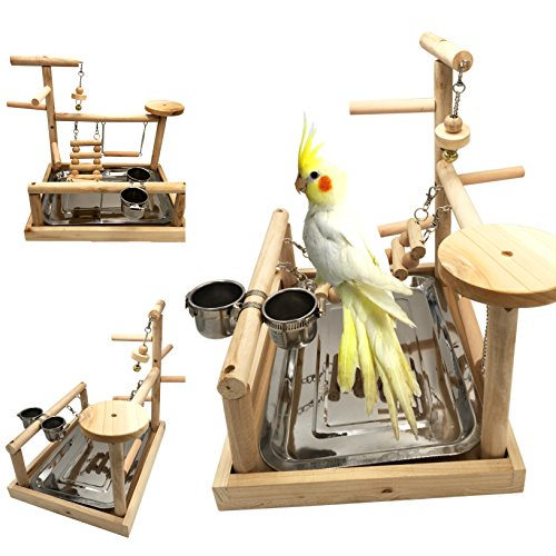 Borangs Parrots Playstand Bird Playground Wood Perch Gym Stand Playpen Bird Ladders Exercise Playgym with Feeder Cups for Parakeet Conure Cockatiel Lorikeet Budgie Cage Accessories Exercise Toy ()
