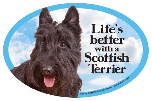 Prismatix Decal Cat and Dog Magnets, Scottish -