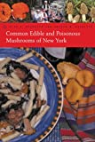Common Edible and Poisonous Mushrooms of New York, Alan E. Bessette and Arleen Raines Bessette, 0815608489