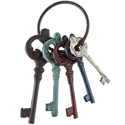 Colorful Cast Iron Key Ring ()