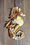 Rustic seahorse decor seashell decoration Beach house sign Nautical ornament Wood wall hanging wedding ocean Coastal sea shells Beachy Seaside seahorses Review