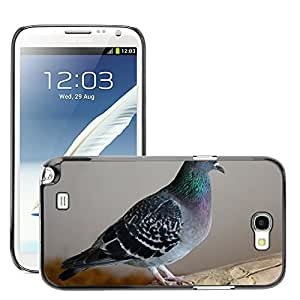 Super Stella Slim PC Hard Case Cover Skin Armor Shell Protection // M00105018 Dove Feather Spring Dress Plumage // Samsung Galaxy Note 2 II N7100