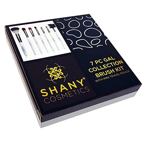 Amazon.com: Shany Juego de brochas con estuche de cuero ...