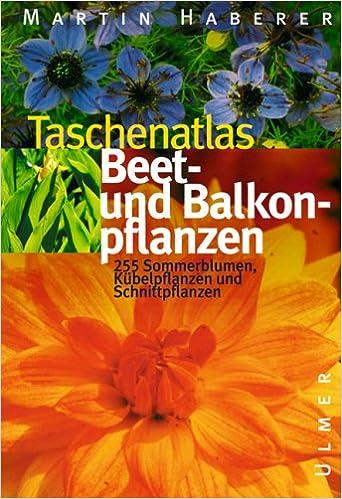 Taschenatlas Beet Und Balkonpflanzen 222 Sommerblumen Schnitt