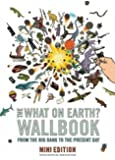 The What on Earth? Wallbook of Big History (MINI EDITION): A Timeline from the Big Bang to the Present Day by Christopher Lloyd (2012) Hardcover