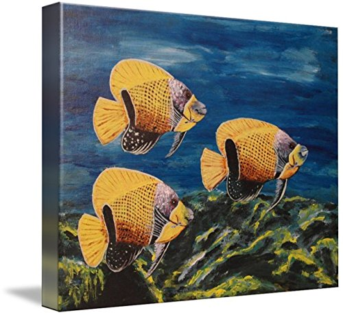 Wall Art Print entitled Majestic Angelfish by Wayne Cantrell | 20 x 16