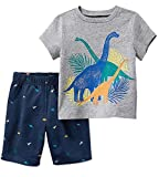 Bumeex Toddler Boys Clothes Dinosaur Short Sleeve Tee and Shorts Set 4t