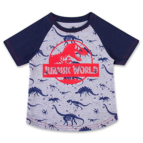 Jurassic Toddler World Dinosaur Shirt Park Tee Featuring T-Rex, Velociraptor, and Dinosaurs (Grey/Red, -