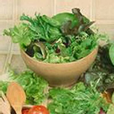 Gourmet Mixed Lettuce Greens - Garden Seeds - Non-GMO, Heirloom Vegetable Gardening & Microgreens Seed