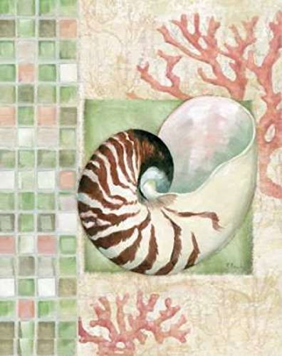 - Posterazzi Mosaic Shell Collage I Poster Print by Paul Brent (24 x 30)