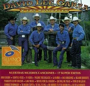 Mis Mejores Canciones: 17 Super Exitos by David Lee Garza