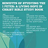 1 Peter: A Living Hope in Christ - Bible Study Book