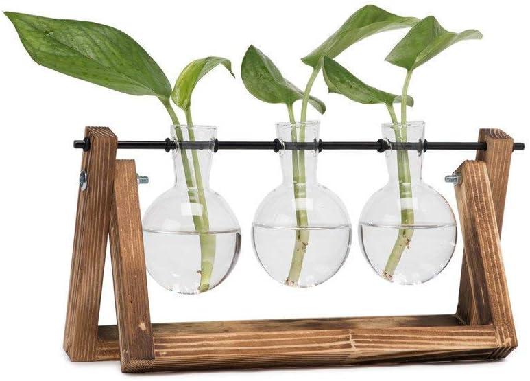 HYINDOOR Desktop Plant Terrarium Glass Planter Bulb Vase with Retro