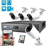 Best Vision 960P 8CH 1TB IP NVR Security Surveillance System + (4) 1.3MP PoE Outdoor Bullet Cameras