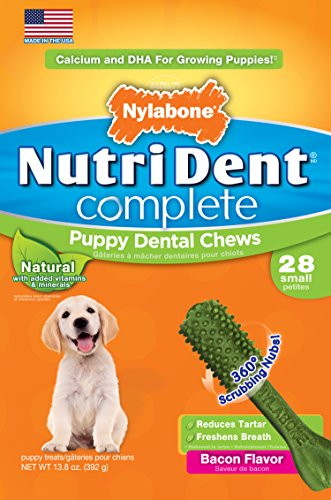 Nylabone Nutri Dent Petite Bacon Flavored Puppy Dog Treat...