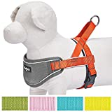 Blueberry Pet 5 Colors Soft & Comfy 3M Reflective Strips Padded Dog Harness Vest, Chest Girth 20.5
