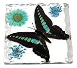 butterfly in resin - REALBUG Resin Coaster with Common Blue Bottle Butterfly