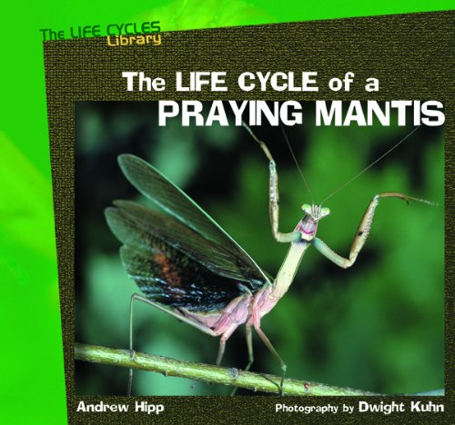 The Life Cycle of a Praying Mantis (Life Cycles Library)