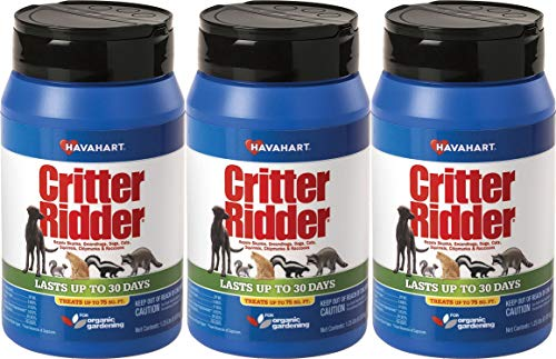 Havahart Critter Ridder 3141 Animal Repellent, 1.25 Pound Granular Shaker (3 Pack) (Best Way To Get Rid Of Cat Urine)