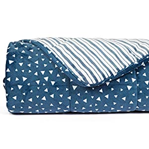 Gut Health Shop 51VABfG53sL._SS300_ Simple Being All in One Plush Weighted Blanket, 48x78 12lb BLUE, Premium Adult Heavy Blanket, Environment Friendly…