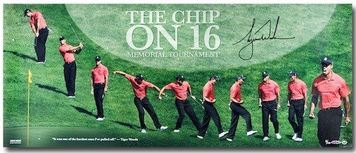 (TIGER WOODS Hand Signed