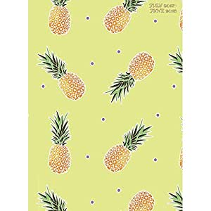 TFB184243A - TF PUBLISHING 2018 Academic Year Pineapples Monthly Planner