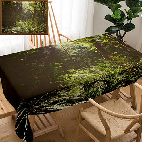 Unique Custom Design Cotton and Linen Blend Tablecloth Bc Vancouver Island Canada Scenic Lush Green Rainforest LandscapeTablecovers for Rectangle Tables, Small Size 48