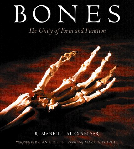 Bones: The Unity Of Form And Function