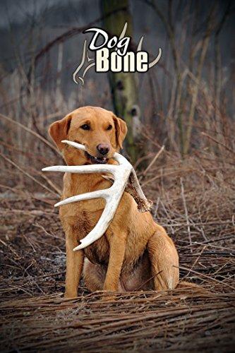 Dog Bone Shed Antler Retrieving System