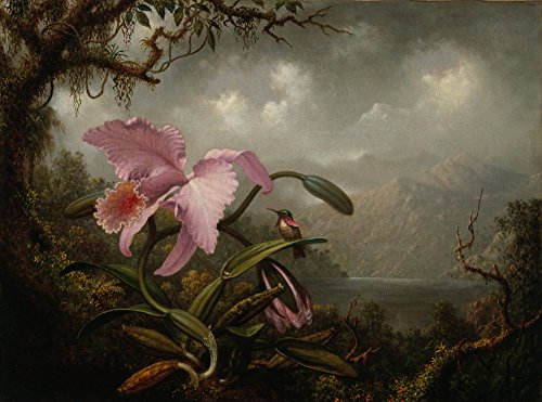 Berkin Arts Martin Johnson Heade Giclee Canvas Print Paintings Poster Reproduction(Orchid and Hummingbird) ()