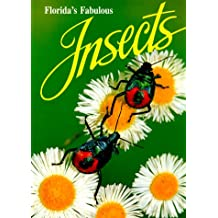 Florida's Fabulous Insects