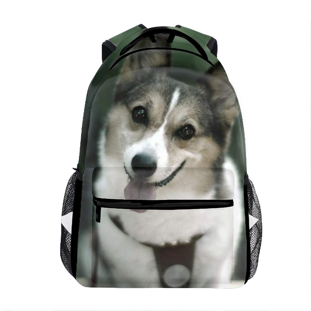 Cute dog46 Backpacks Female knapsack Daypack Lightweight College Bags School Bookbag Casual Fashion Lion Planet Mountains Art Backpacks