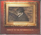 I'll Be Missing You: Tribute to the Notorious B.I.G. By Diddy (Sean Combs) (1997-06-13)
