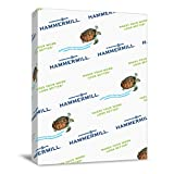 Hammermill Printer Paper, Colors Goldenrod, 24lb, 8.5 x 11, Letter -1 Pack / 500 Sheets (104349R)
