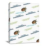 Hammermill Printer Paper, Colors Goldenrod, 20lb, 11 x 17, Ledger - 1 Pack / 500 Sheets (102160R)