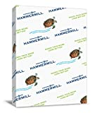 Hammermill Paper, Colors Canary, 20lb, 8.5x14, Legal, 500 Sheets / 1 Ream (103358R), Made In The USA