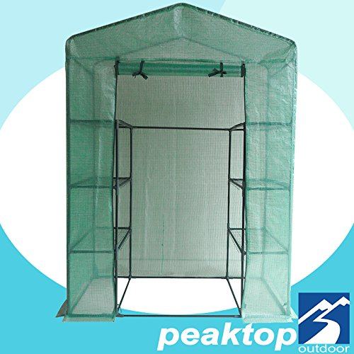 Peaktop Portable Mini Greenhouse Walk in Grow Garden Plant Growing Green House Small Hot Tent 4 Tiers 6 Shelves 78''x56''x30'' Steel Framework with Cover by Peaktop
