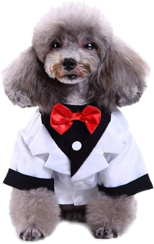Wicemoon 1pcs Traje de La Camisa del Perro para La Ropa del Caballero del Smoking de La Boda del Perrito S 24cm: Amazon.es: Productos para mascotas