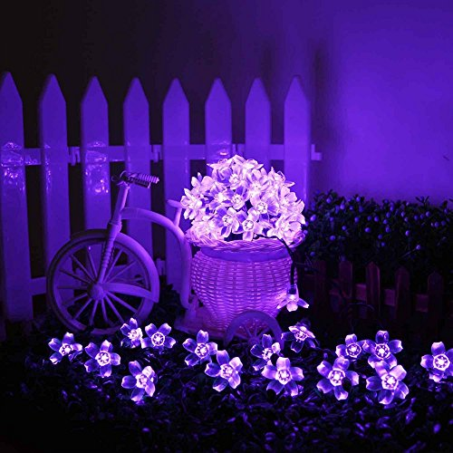 Blossom Flower Solar String Lights, 21ft 50 LED Waterproof Outdoor Decoration Lighting for Indoor/Outdoor, Patio, Lawn, Garden, Christmas, and Holiday Festivals (Purple) by JankoPalise