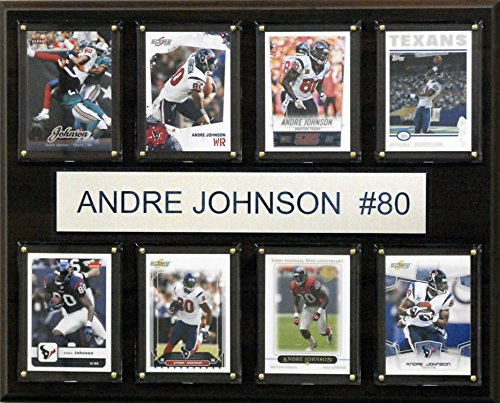 NFL Houston Texans Andre Johnson 8-Card Plaque, 12 x 15-Inch