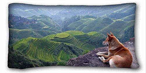 ソフト枕ケースカバー(動物チーターLies Wild Cat Spotted )長方形枕カバー20x 36インチ(片面)キングベッド用pc-red-24476