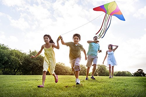 A Nylon Childrens Kite for Kids to Adults Children Girls Boys Adult Beginner The Large Easy Fly Beach Toys Games Activities Kites Flying Outdoor Trip Wind High Line Flyer Big String Game 2 Delta