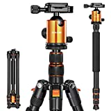 Joilcan 80-inch Tripod for Camera, Aluminum Tripod for DSLR,Monopod, Lightweight Tripod with 360 Degree Ball Head Stable for Travel and Work 18.5\