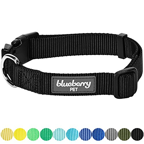 ors Classic Dog Collar, Black, Small, Neck 12