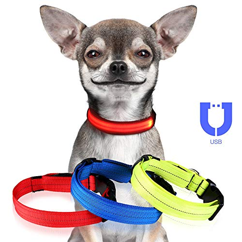 Jinzhao Reflective Dog Collar-LED Dog Collar with USB Chargeable Light,3 Glowing/Reflective Modes Strings,Outdoor Adjustable Buckle &D-Ring (Red 12.2''-15.8''Neck S)