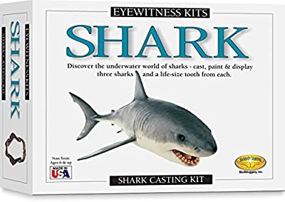 Skullduggery Eyewitness Shark Casting Kit